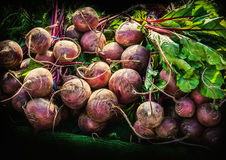 Radish. On a market stall Stock Photography