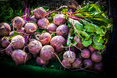Radish. On a market stall Royalty Free Stock Photography