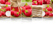 Radish Mix Slices. Photo of fresh radish abstract horizontal mix with basket and puree glass; healthy eating; white space for text Stock Photography