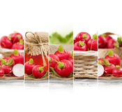 Radish Mix Slices. Photo of fresh radish abstract horizontal mix with basket and puree glass; healthy eating; white space for text Stock Photos