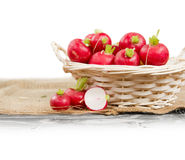 Radish in nasket. Photo of fresh radish in a basket with white space Stock Image