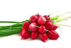 Radish and onion Stock Photos