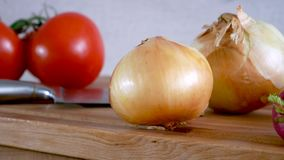 Dolly. Radish onion tomato knife and other vegetables on a kitchen board. Radish onion tomato knife and other vegetables on a kitchen board stock footage