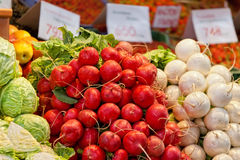 Radish and other vegetables Stock Image
