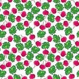 Radish pattern Royalty Free Stock Photography