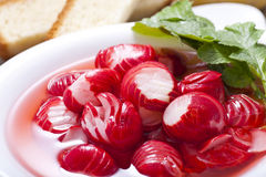 Radish salad Stock Photography