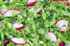 Radish salad background Royalty Free Stock Photography