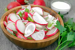 Radish salad Stock Image
