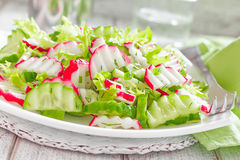 Radish salad. With cucumbers on a plate Stock Photo