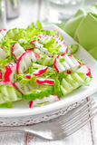Radish salad. With cucumbers on a plate Stock Image