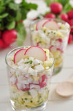 Radish salad Royalty Free Stock Photos