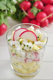 Radish salad Royalty Free Stock Images