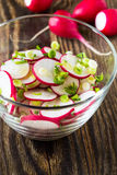 Radish salad with  green onions Stock Photography
