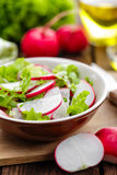 Radish salad. With lettuce and onion Stock Images