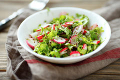 Radish salad in a white bowl. Food closeup Royalty Free Stock Photography