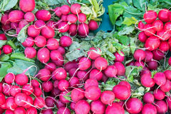 Radish for sale at a market Stock Image