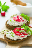 Radish sandwich Royalty Free Stock Photography