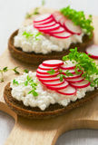 Radish sandwich Stock Photo