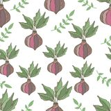 Radish seamless pattern. Hand drawn illustration Royalty Free Stock Photos