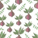 Radish seamless pattern. Hand drawn illustration. Vegetables Royalty Free Stock Photos