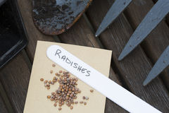 Radish Seeds for Gardening Stock Photography