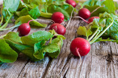 Radish. Some fresh ripe radishes on old wooden table Royalty Free Stock Images