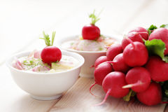 Radish soup. Delicious radish soup with potatos - food and drink Royalty Free Stock Photography