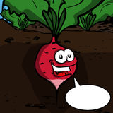 Radish with speech bubble Stock Images