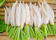 Radish stack at market Stock Photography