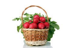 Radish. Tasty and healthy radish in a wicker wooden basket isolated on white background Stock Photos