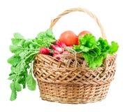 Radish, tomato, lettuce, basket Stock Images