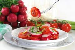 Radish and tomato salad Stock Images