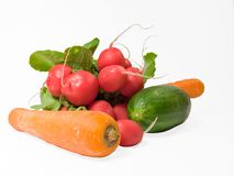 Radish and vegetable. Fresh radish, carrots and green cucumber. Isolated on the white background, working path included Stock Photography