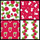 Radish Vegetable Seamless Patterns Set Royalty Free Stock Photos