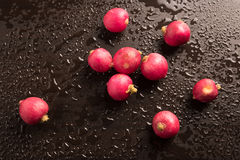 Radish in a wet background. Fresh radish in a wet background Royalty Free Stock Photo