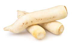 Radish white Stock Images