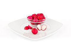 Radish on white background.. Stock Images