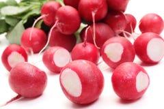 Radish on white background. Fresh radish on white background Stock Photos