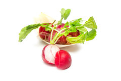 Radish on white background. Fresh raw spicy  radish on white background Stock Image