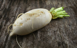 Radish white Royalty Free Stock Photos