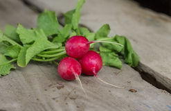 Radish on the wooden background. Ripe red radish  lying on a wooden background Stock Photo
