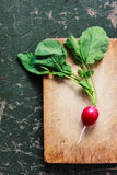 Radish on a wooden board / background. Royalty Free Stock Photo