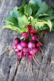 Radish on a wooden board Stock Images