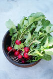 Radish in a wooden bowl. Fresh Organic Radish in a metal cup, rustic style, selective focus Royalty Free Stock Image