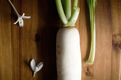 Radish on wooden floor Royalty Free Stock Photos