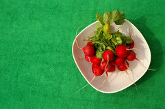Radishes Imagem de Stock Royalty Free