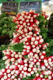 Radishes. Bunch of fresh red radishes displayed at farmers market in Beaune, France Stock Photos