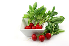 Radishes. Bunch of fresh radishes in and around a white bowl Royalty Free Stock Images