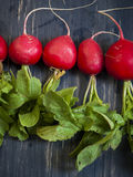 Radishes. The radish is an edible root vegetable of the  that was domesticated in Europe, in pre-Roman times Stock Image