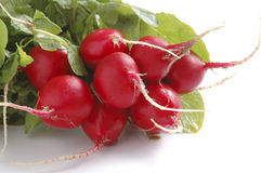 Radishes. Bunch of red radishes on a white background Royalty Free Stock Photo